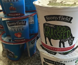 feed your brain with stonyfield yogurt